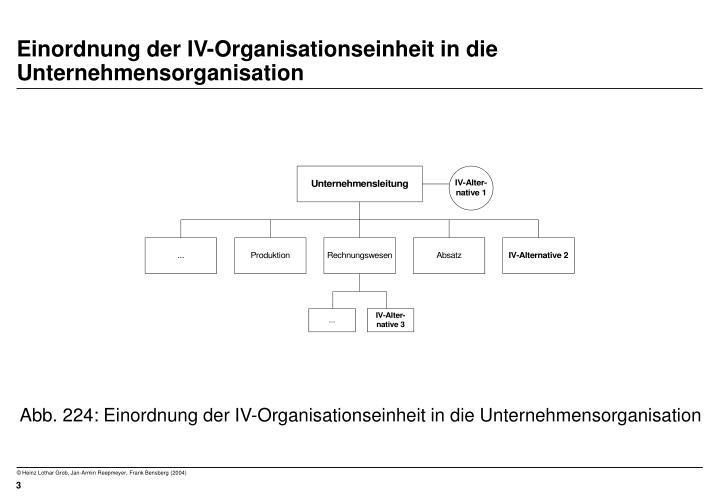 Einordnung der iv organisationseinheit in die unternehmensorganisation