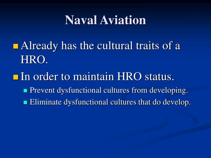 Naval Aviation