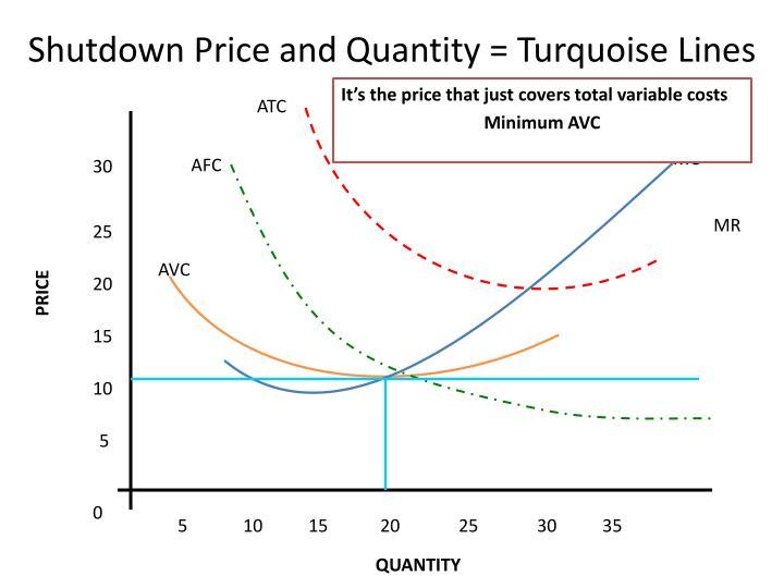 Shutdown Price and Quantity = Turquoise Lines