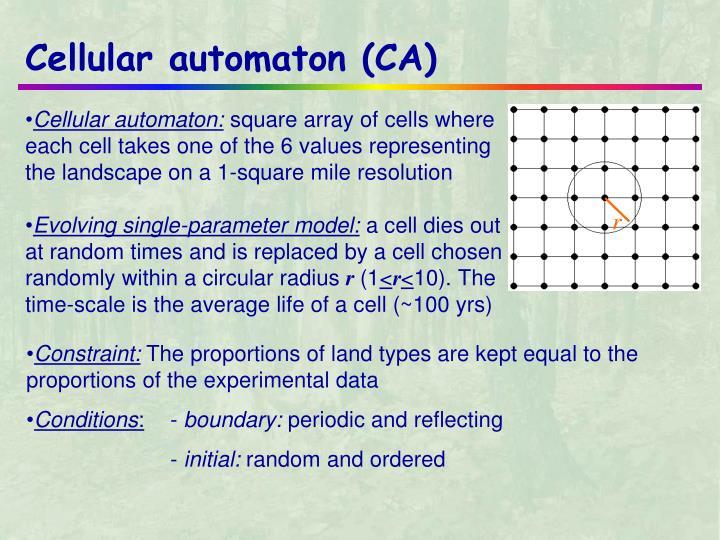 Cellular automaton (CA)