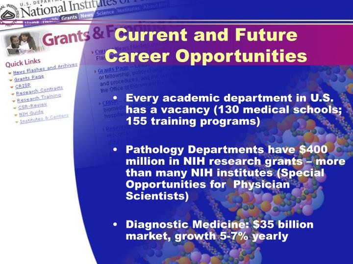 Current and Future Career Opportunities