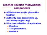 teacher specific motivational components