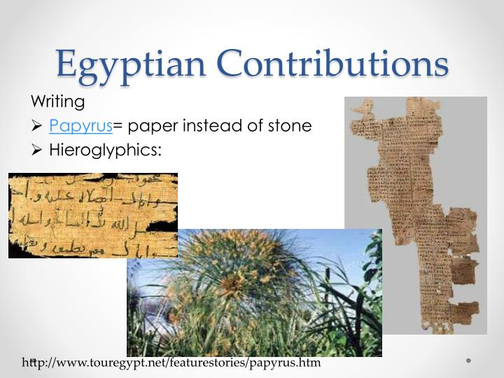 Egyptian Contributions