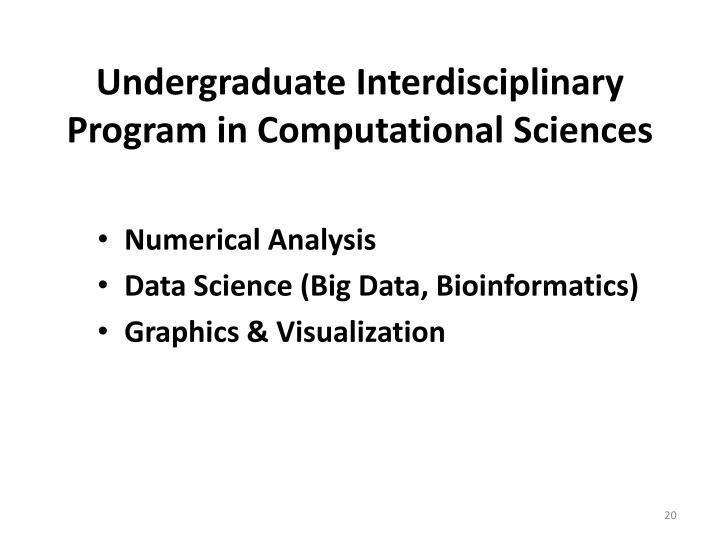 Undergraduate Interdisciplinary Program in Computational Sciences