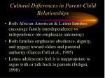 cultural differences in parent child relationships