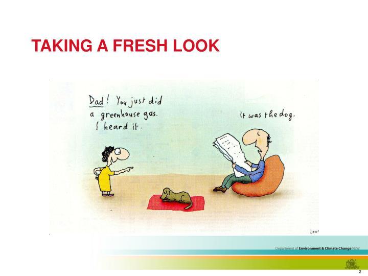 Taking a fresh look