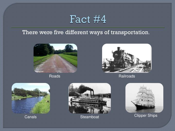 Fact #4