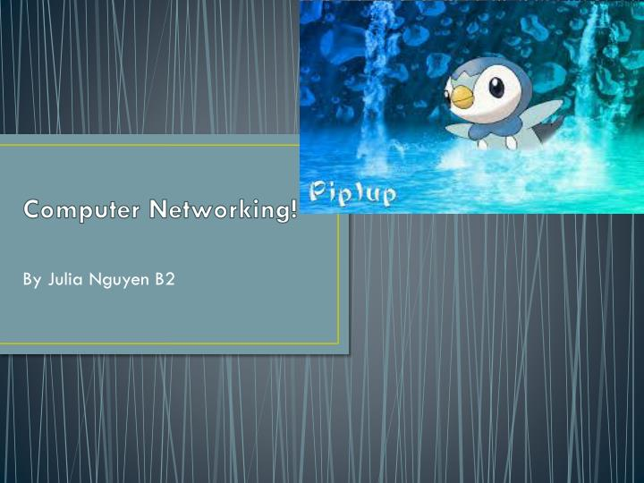 computer networking n.