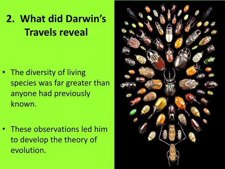 2.  What did Darwin's Travels reveal