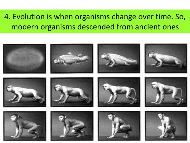 4. Evolution is when organisms change over time. So, modern organisms descended from ancient ones