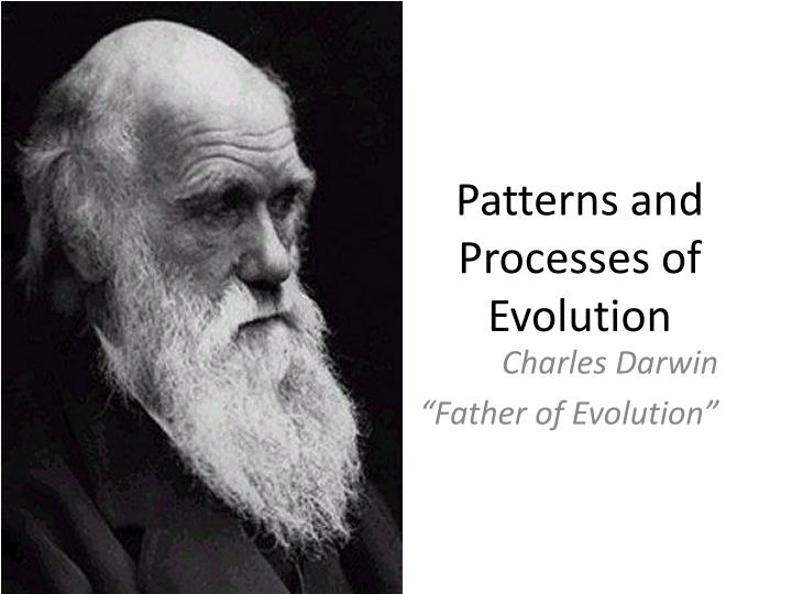 Patterns and processes of evolution