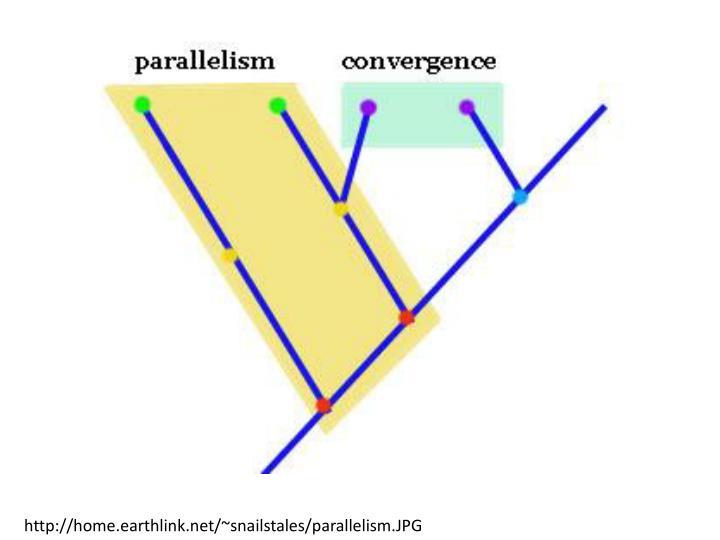 http://home.earthlink.net/~snailstales/parallelism.JPG