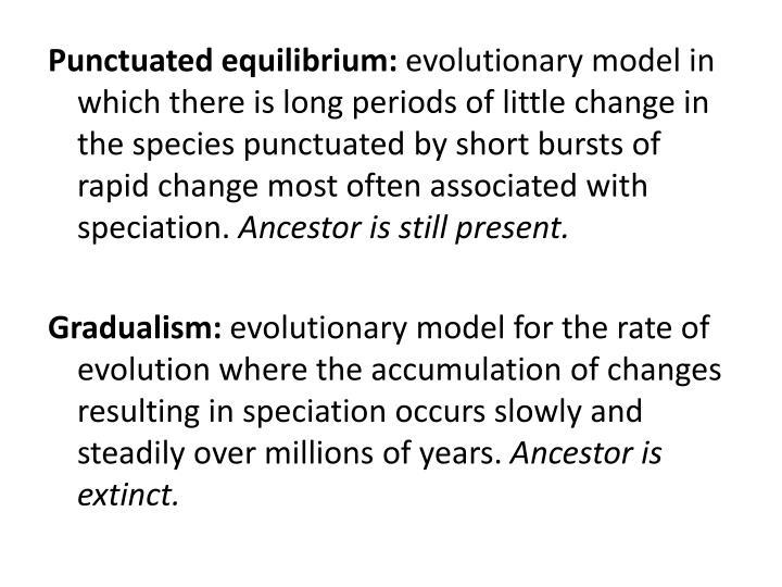 Punctuated equilibrium: