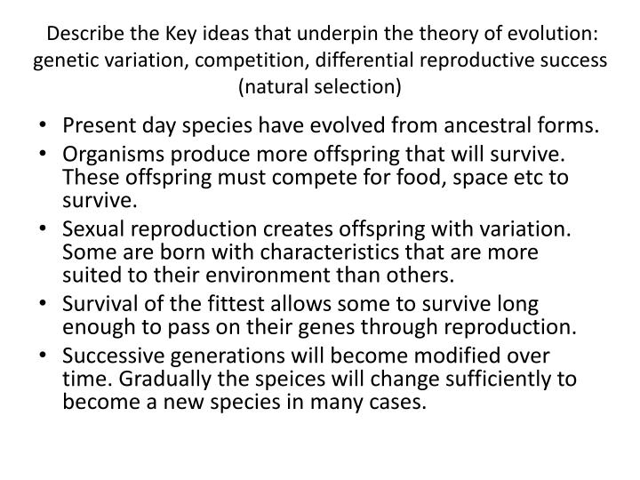 Describe the Key ideas that underpin the theory of evolution: genetic variation, competition, differential reproductive success (natural selection)