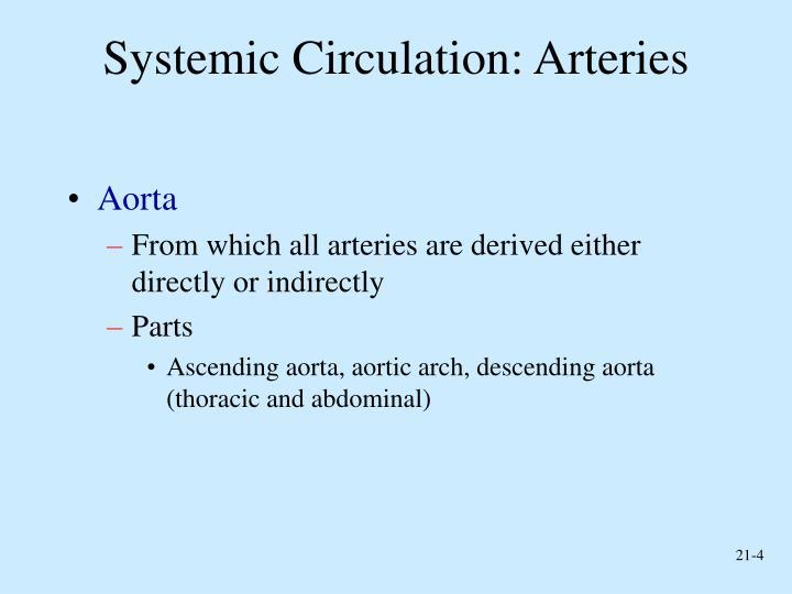 Systemic Circulation: Arteries