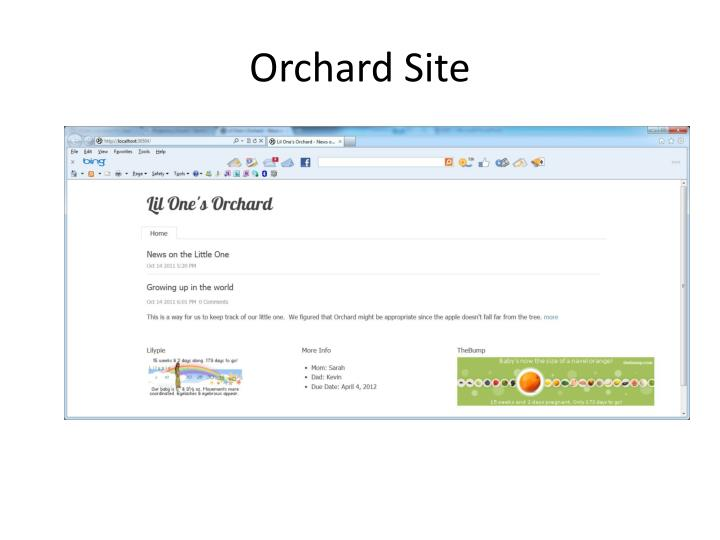 Orchard Site