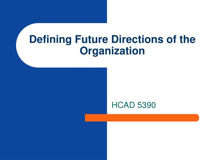 Defining future directions of the organization