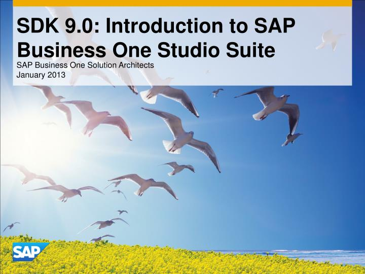 sdk 9 0 introduction to sap business one studio suite n.