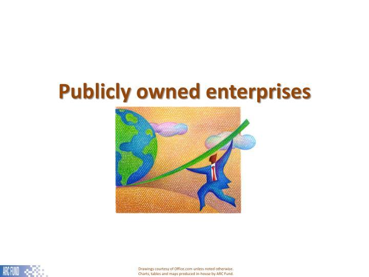 Publicly owned enterprises