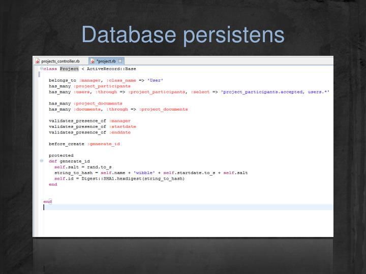 Database persistens
