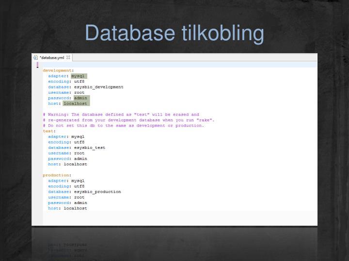 Database tilkobling