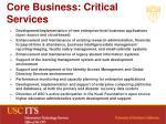 core business critical services