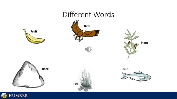 Different Words