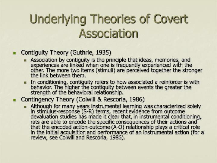 Underlying Theories of Covert Association
