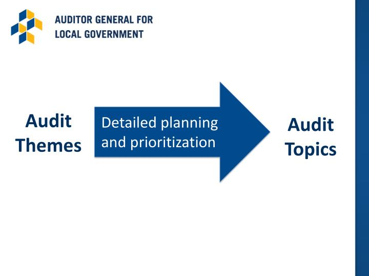 Audit Themes