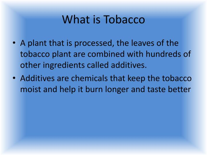 What is tobacco
