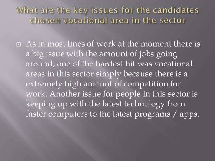 What are the key issues for the candidates chosen vocational area in the sector