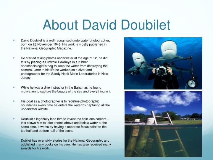 About david doubilet