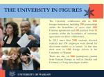 the university in figures