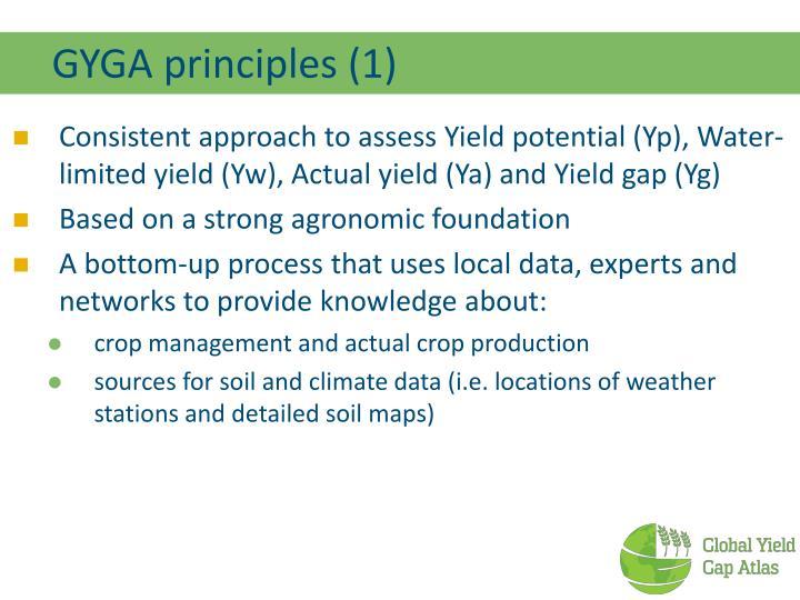 GYGA principles (1)