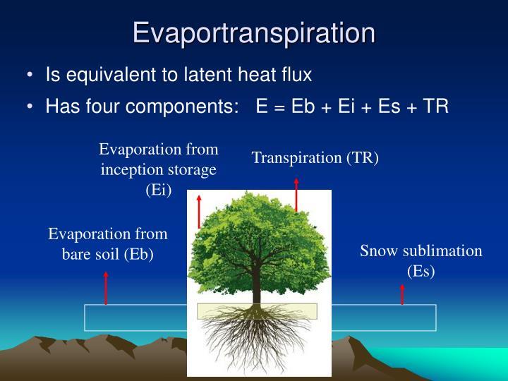 Evaportranspiration