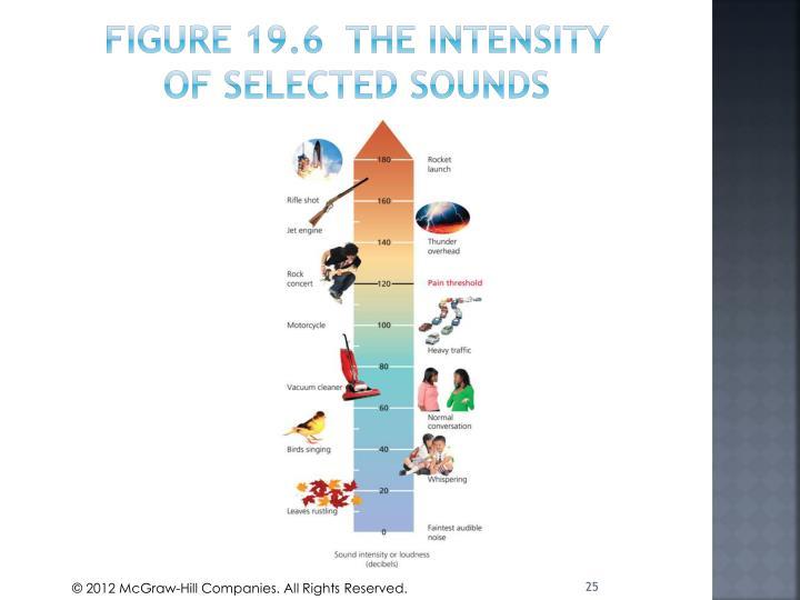 Figure 19.6  The intensity