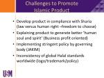 challenges to promote islamic product