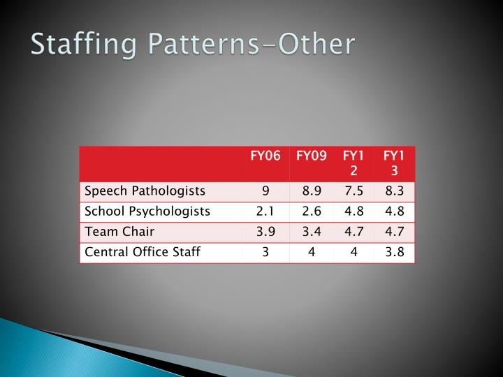 Staffing Patterns-Other