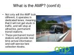 what is the amp cont d