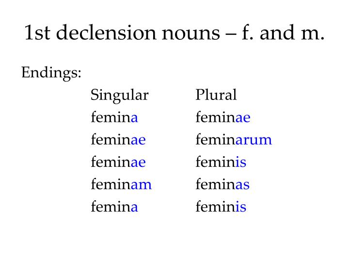 1st declension nouns f and m
