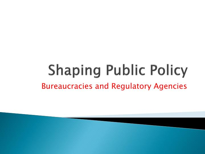 shaping public policy n.