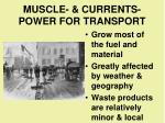muscle currents power for transport1
