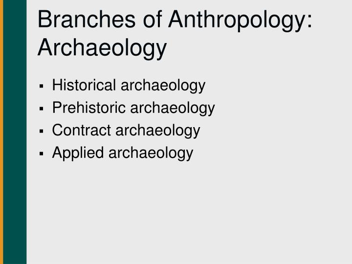 Branches of Anthropology: Archaeology