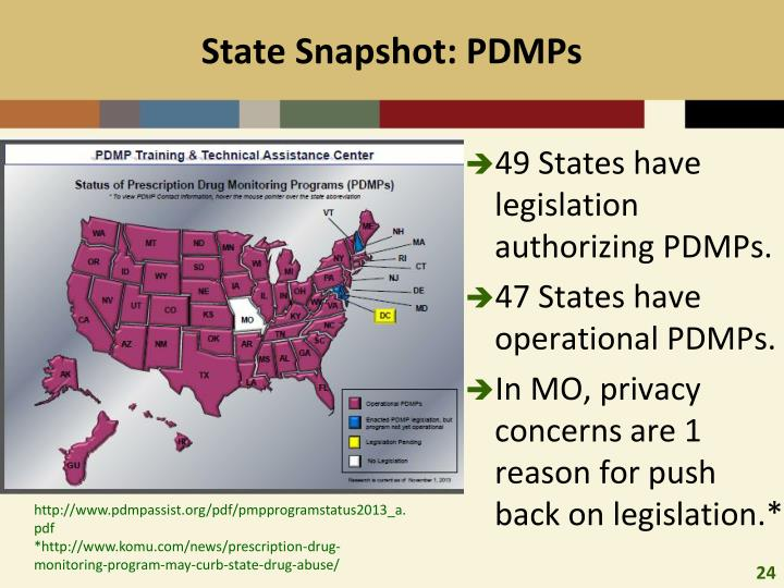 State Snapshot: PDMPs