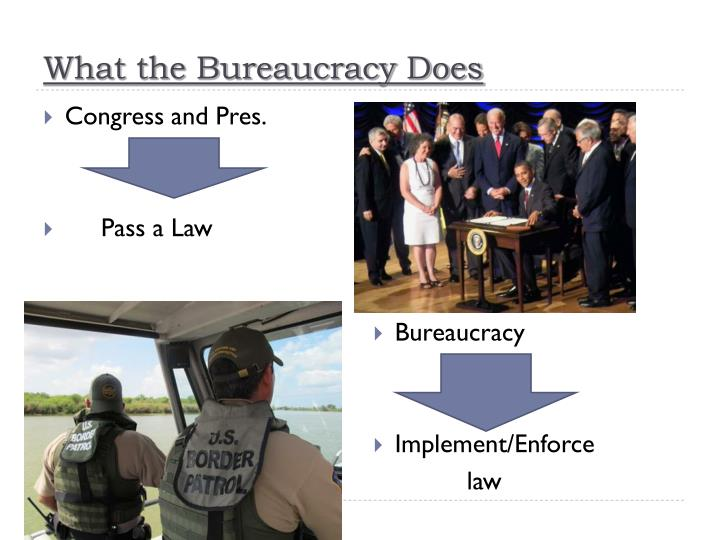 What the Bureaucracy Does