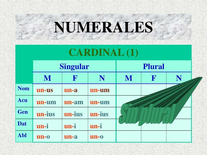 Numerales