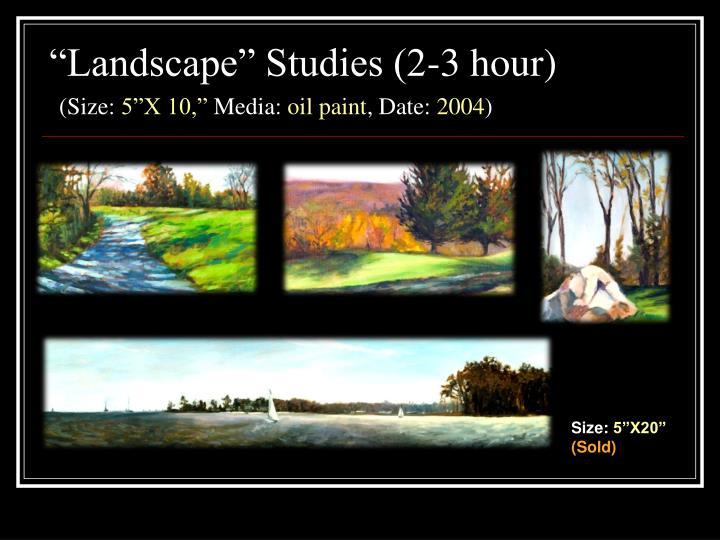 Landscape studies 2 3 hour size 5 x 10 media oil paint date 2004