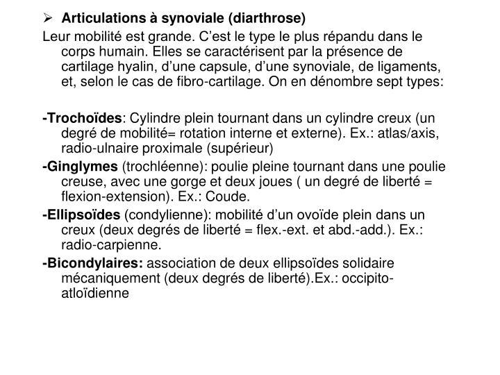 Articulations à synoviale (diarthrose)