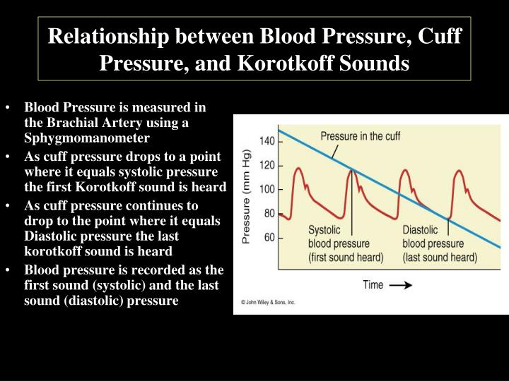Relationship between Blood Pressure, Cuff Pressure, and Korotkoff Sounds