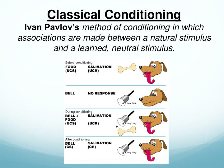 psychology classical conditioning Classical conditioning and i do not understand it at all -acquisition -interstimulus interval -extinction -spontaneous recovery -generalization -discrimination -high ordering conditioning -condition.